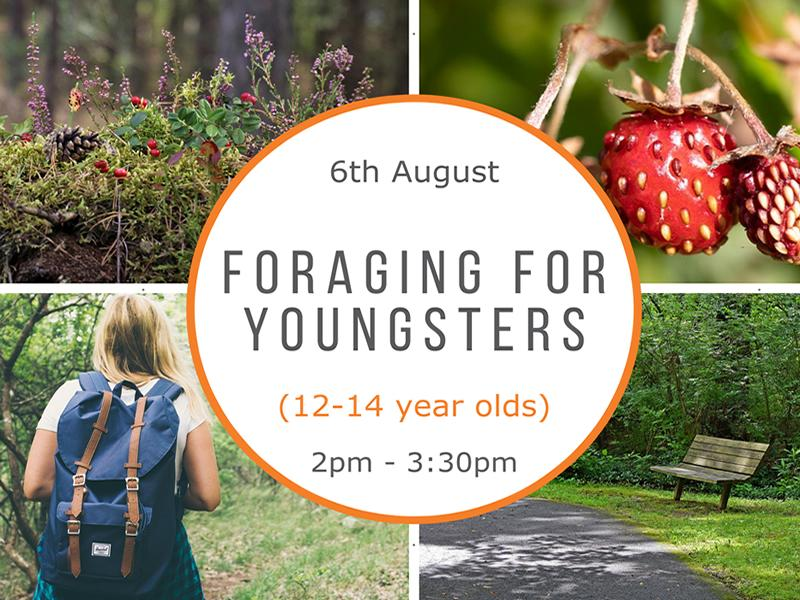 Foraging for Youngsters (12-14 year olds)