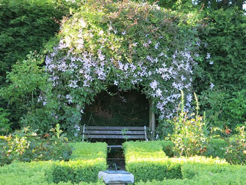 Scotland's Gardens Scheme Open Garden: Shrubhill