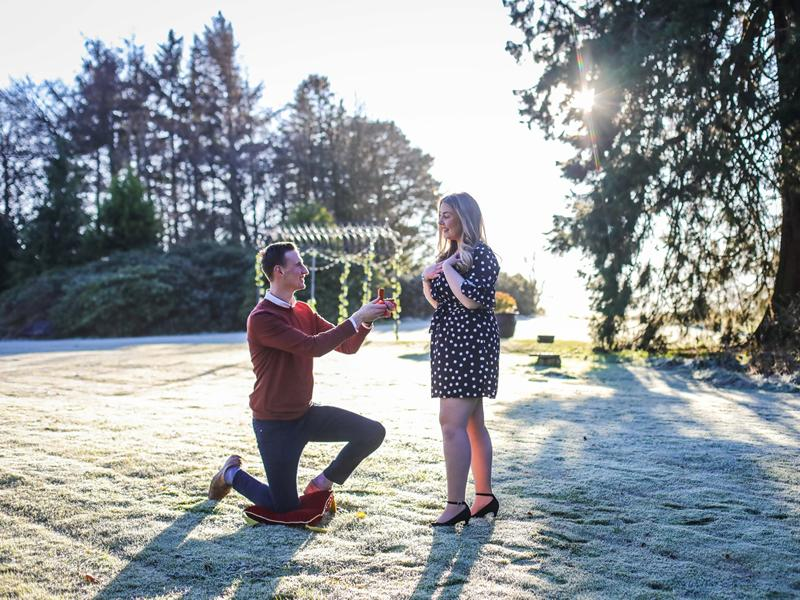 Planning a festive proposal...