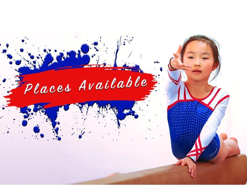 Flair Gymnastics Club Gymnastics Classes