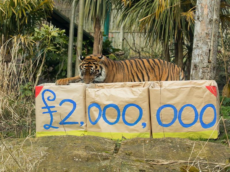 Two million Postcode Lottery funding milestone for Royal Zoological Society of Scotland