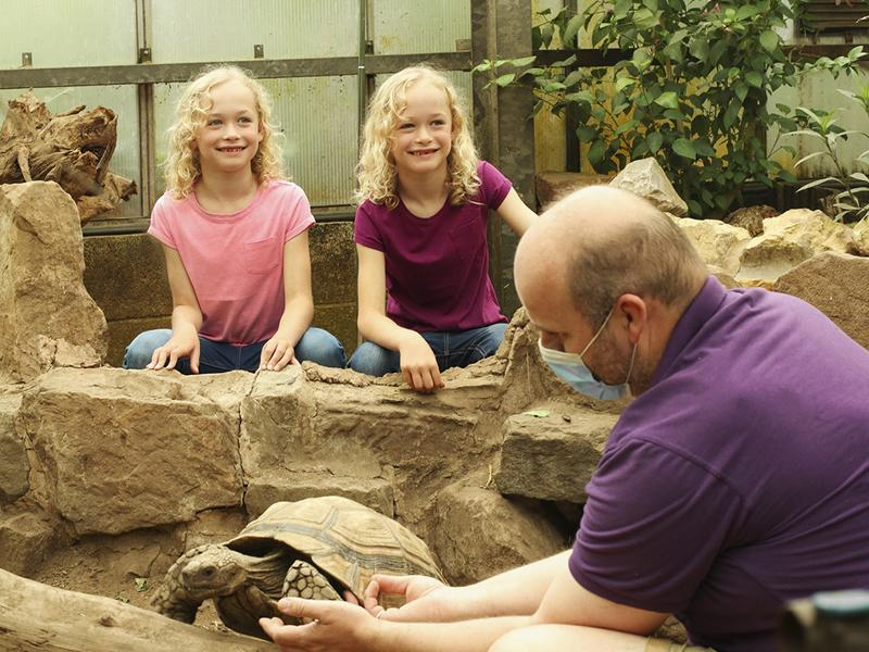 Butterfly and Insect World welcomes back customers
