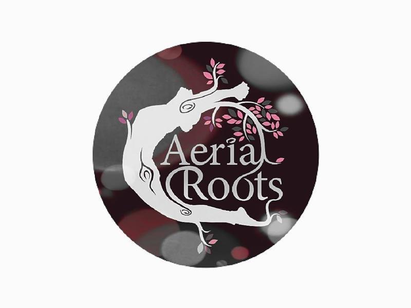 Aerial Roots Studio