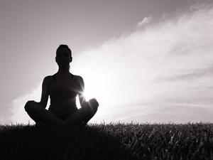 Mindfulness Development Group