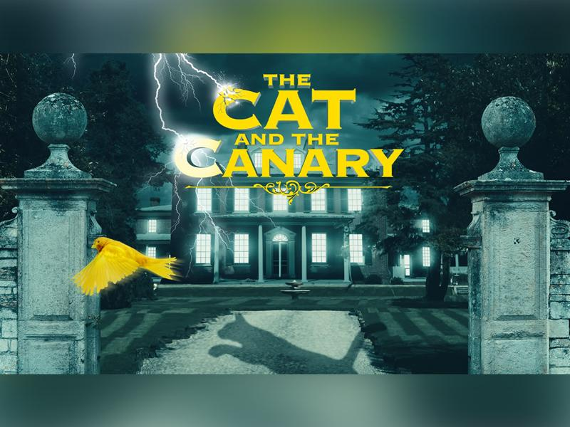 The Cat and the Canary - SUSPENDED