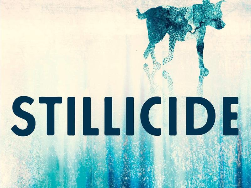 The Dark Philosophers Book Group: Stillicide by Cynan Jones