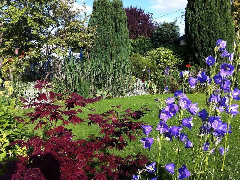 Scotland's Gardens Scheme Open Garden: Eskbank Village Gardens
