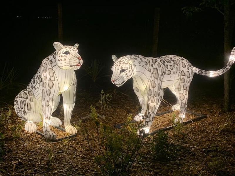 Five Sisters Zoo Autumn Nights