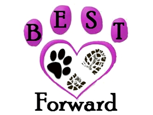 Best Paw Forward Dog Training Club