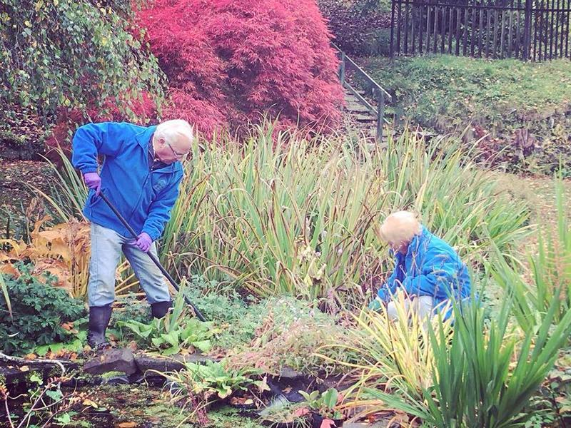 Autumn Volunteer Sessions