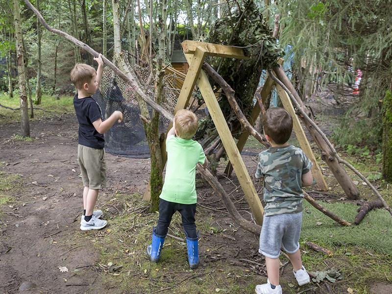 Den Building Adventures and Astounding Discoveries