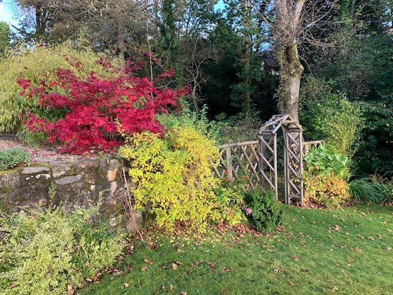 Scotland's Gardens Scheme Open Garden: 18 Duchess Park with High Glenan and Westburn