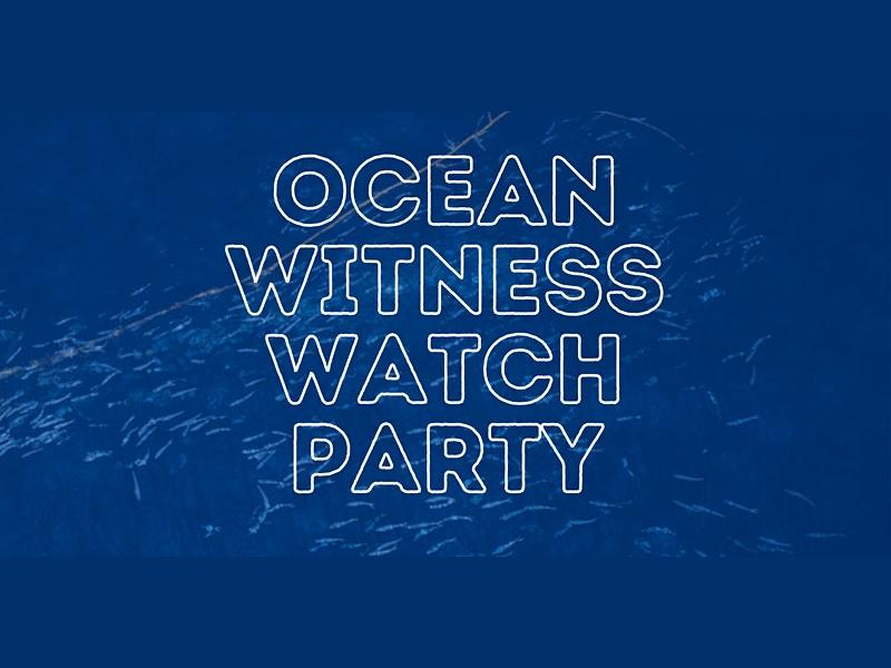 Ocean Witness Watch Party with Greenpeace Glasgow (Part 2)