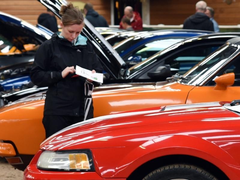 Erskine Classic Car Show