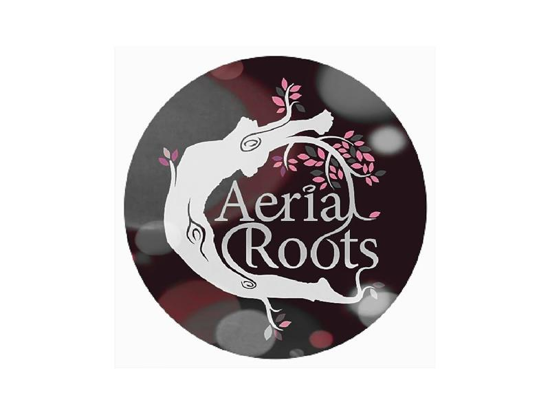 Aerial Roots Yoga and Pilates - Online Classes