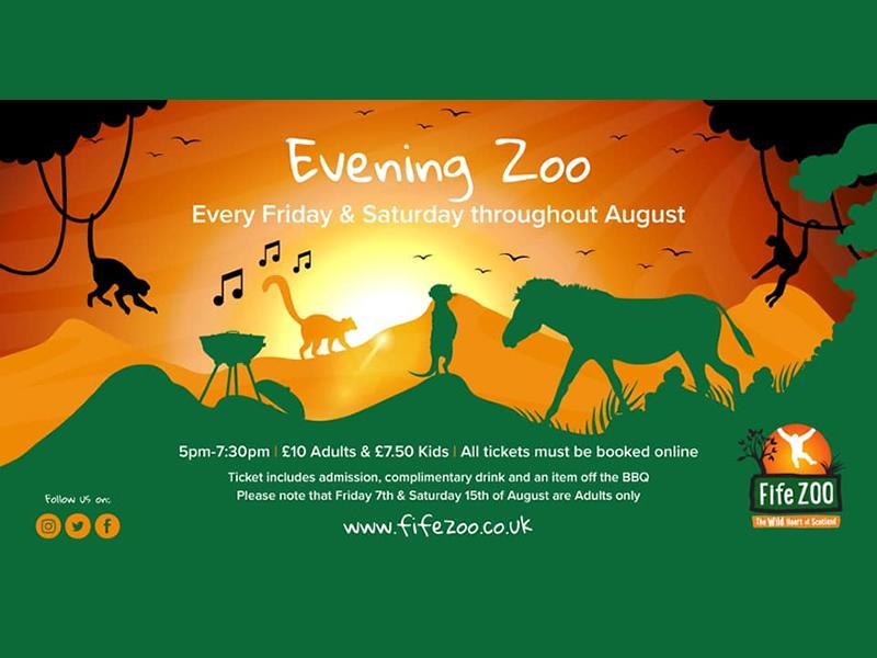 Evening Zoo