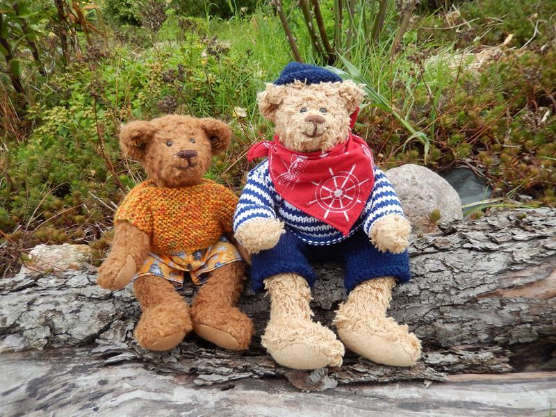 Ted's Teddy Bear Picnic