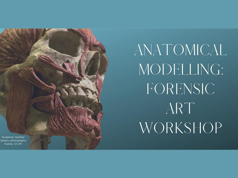 Anatomical Modelling: Forensic Art Workshop - CANCELLED