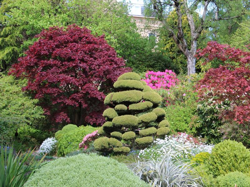 Scotland's Gardens Scheme Open Garden: Redcroft