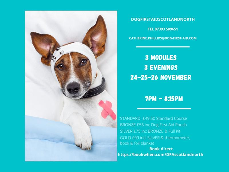 Dog First Aid (LIVE) 3 modules 3 evenings