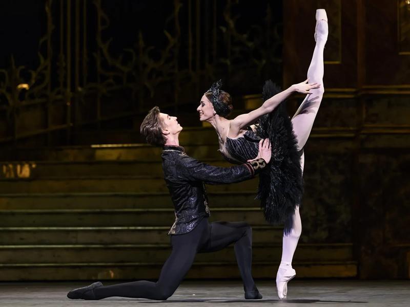 Royal Opera House Screening: Swan Lake