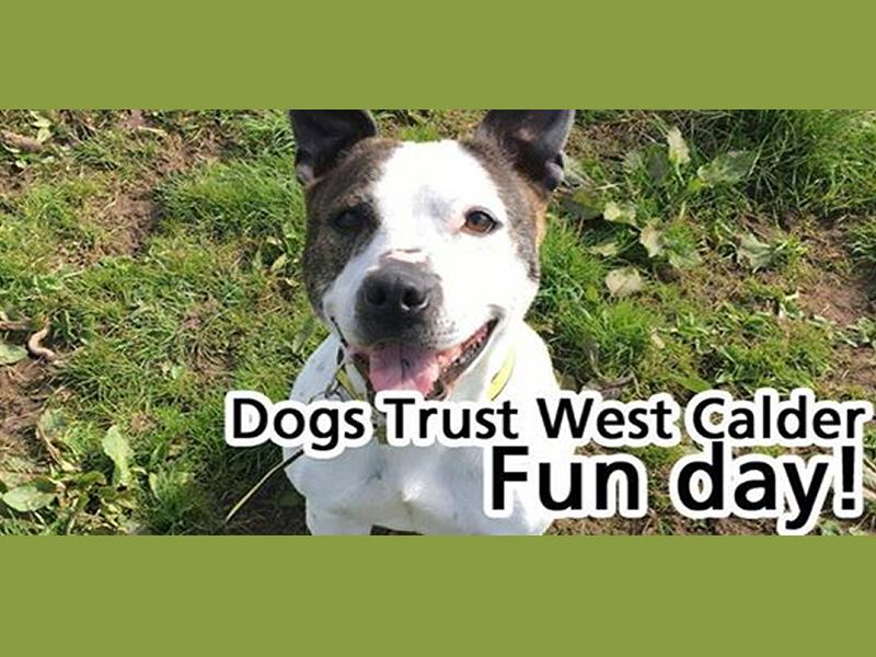 Dogs Trust West Calder Fun Day