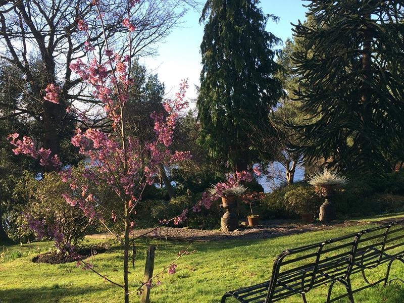 Scotland's Gardens Scheme Open Garden: Dr Neil's Garden