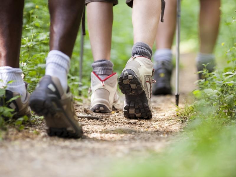 Active Communities: Walking Buddies