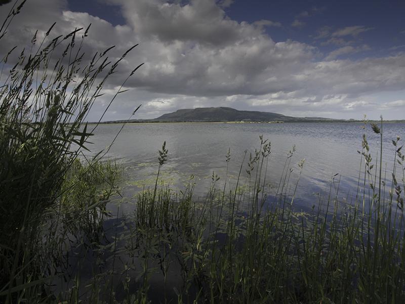 Emily Williamson Statue Campaign national tour visits RSPB Loch Leven