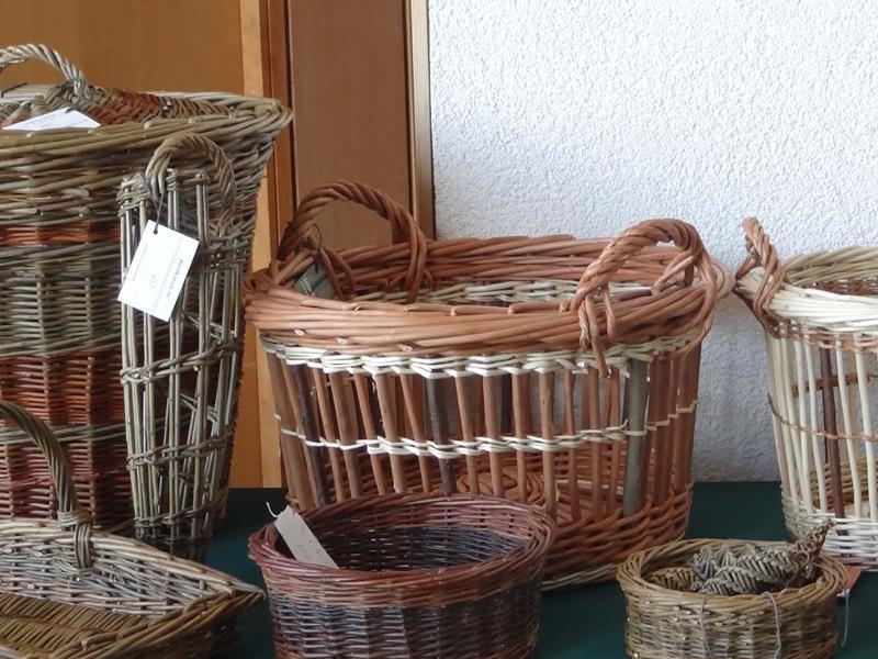 Willow Harvest