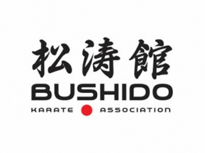 Bushido Karate Club