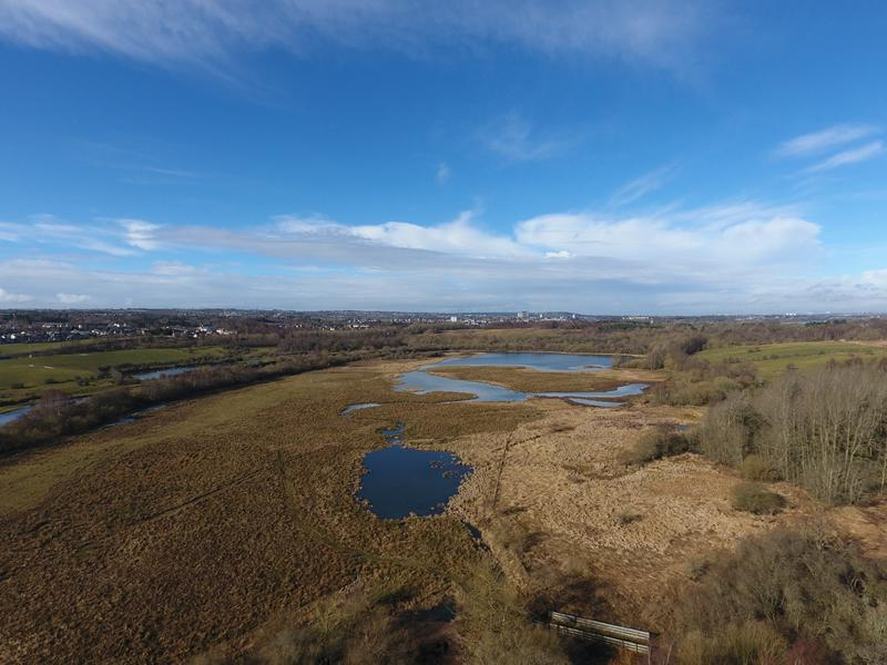 Delivering for the Future: Public Consultation on Plans for RSPB Baron's Haugh