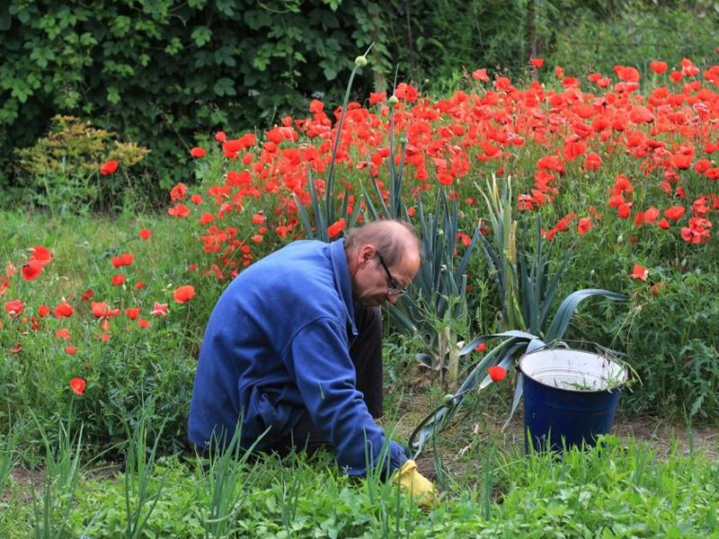 Mindful Gardening: Weeding, Feeding and Composting