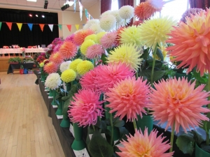 Busby & Clarkston Horticultural Society