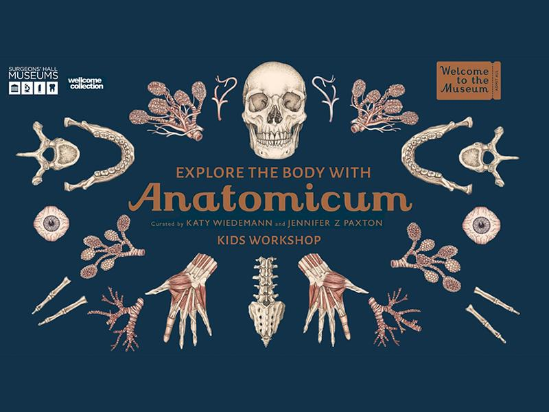 Explore The Body with Anatomicum