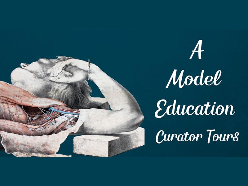 A Model Education: Curator Tours - CANCELLED