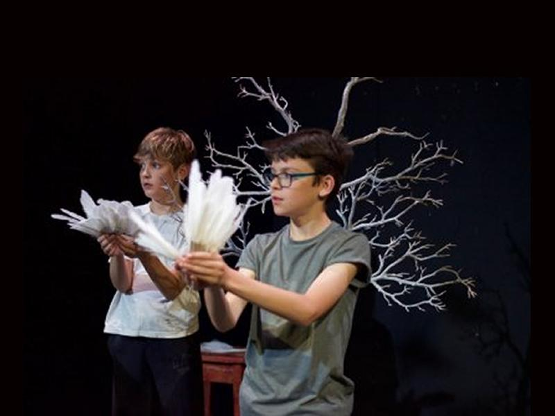 Theatre Skills: Puppets and Props