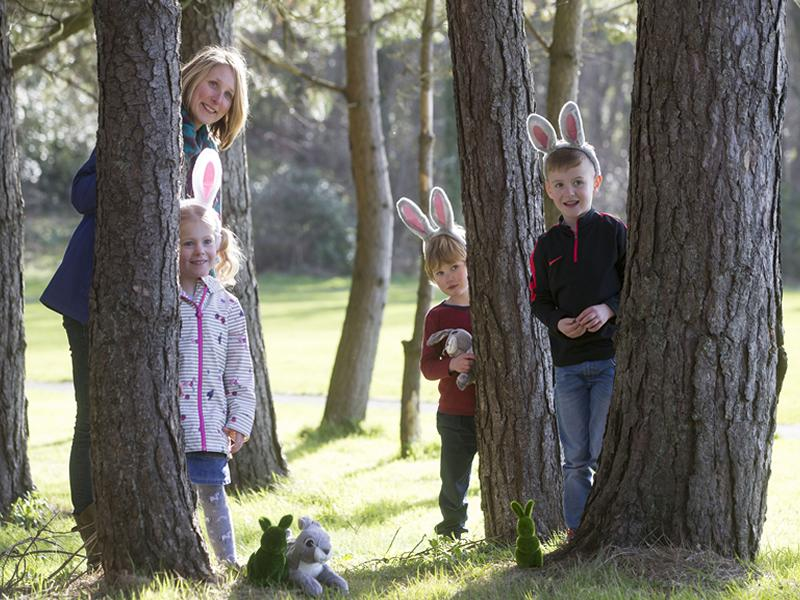 Cadbury Easter Egg Hunt at Battle of Bannockburn Centre - CANCELLED
