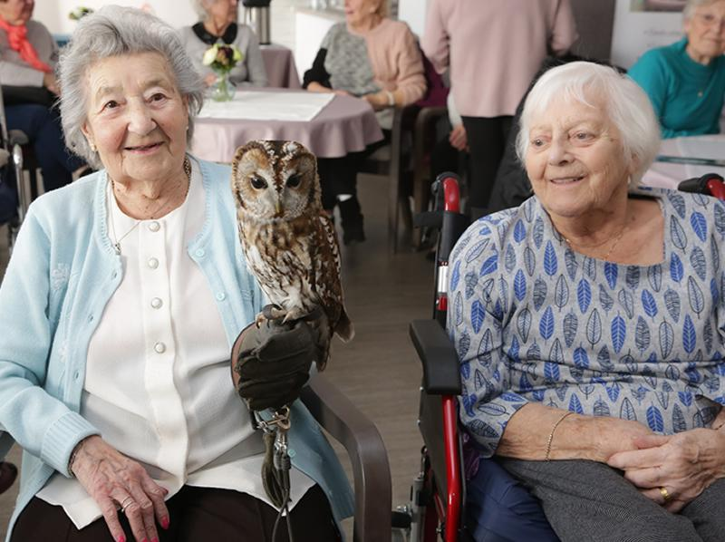 Edinburgh care homes residents spread their wings to celebrate the best of British birds