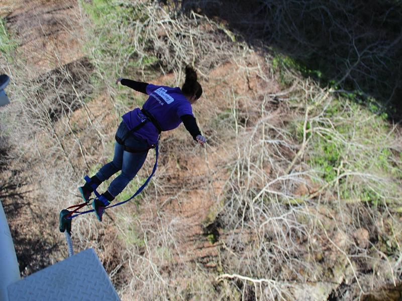 Spring Bungee Jump and Highland Swing