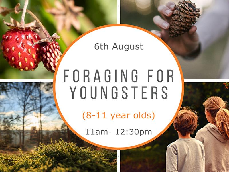 Foraging for Youngsters (8-11 year olds)